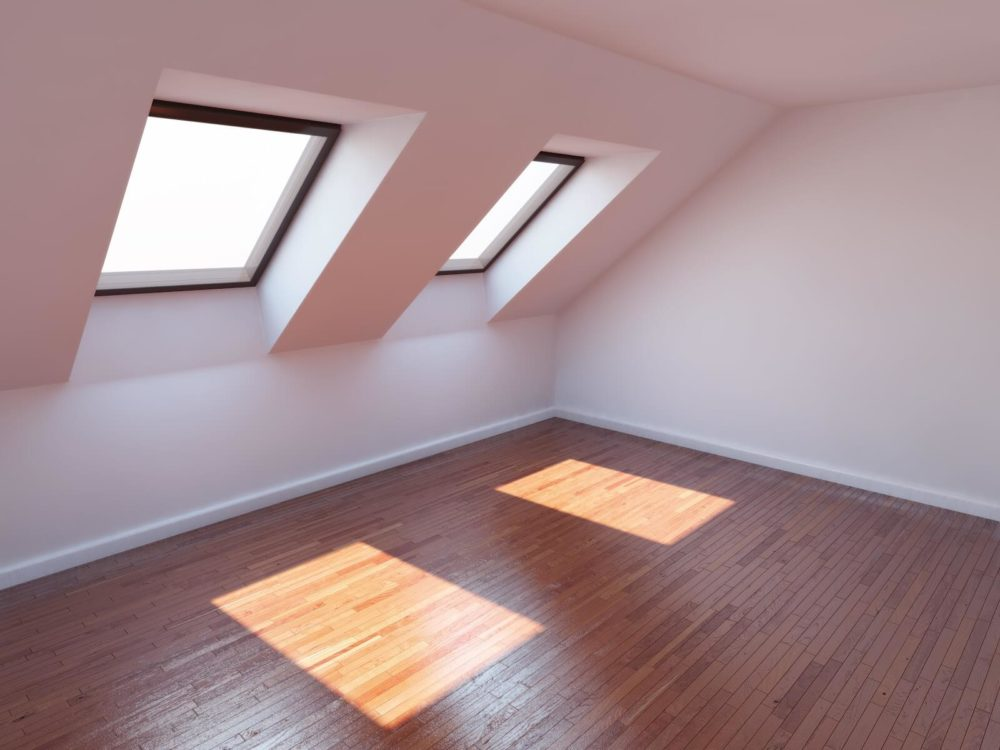 Roof Windows or Skylights
